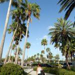 Florida Retail Malls by Donna Jean Coquilla