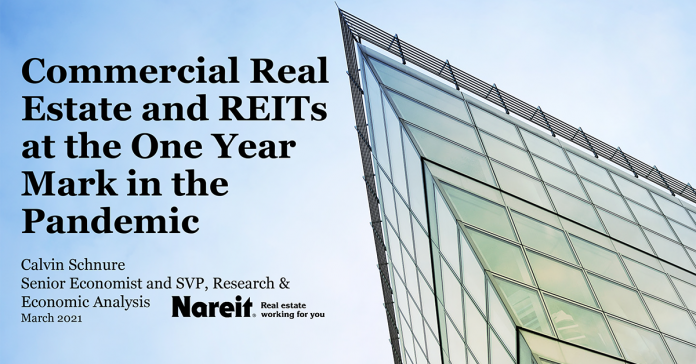 Commercial Real Estate and REITs at the One-Year Mark in the Pandemic
