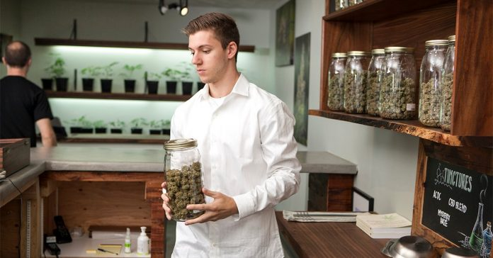 As Lease Addendums Rise, Marijuana Businesses Adapt by Purchasing Commercial Property