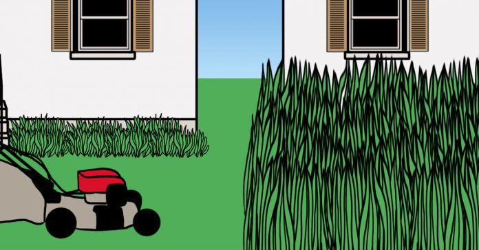 Can I Make My Neighbor Mow His Lawn?