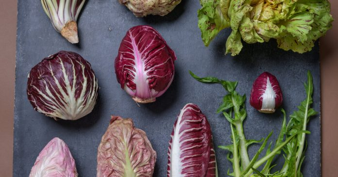 If You've Never Tried Growing Radicchio, Now Is the Time
